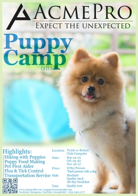 Puppy Camp (Eng)