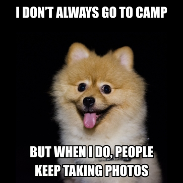 I don't always go camping